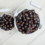 ニュージーランドカシスの抗酸化物質(カシスアントシアニン)はなぜすごい?